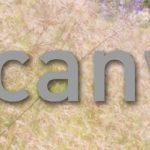Canvas-logo på sommerlig naturbakgrunn